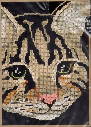 Dimensions 06696 Tabby Portrait (made in USA)