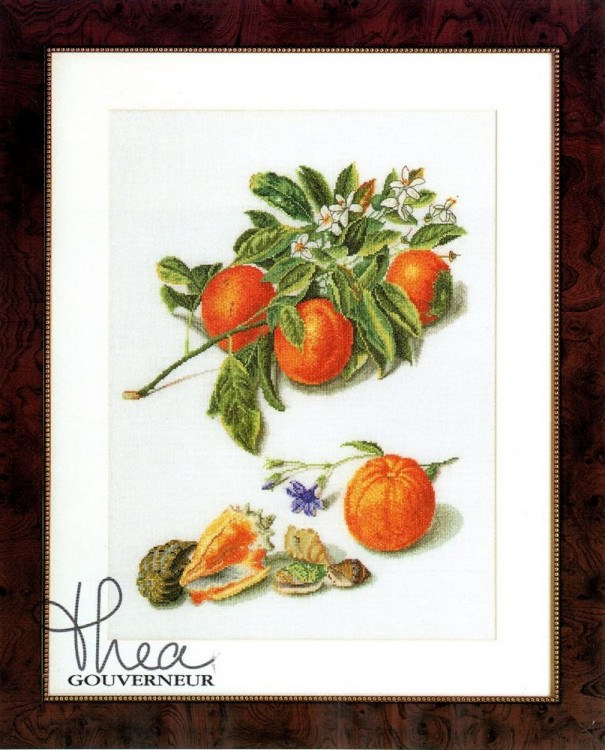 Набор для вышивания Thea Gouverneur 3061 Oranges and Mandarins