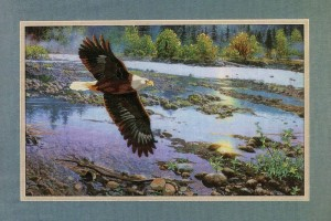 Dimensions 11094 Spring on the River (made in USA)